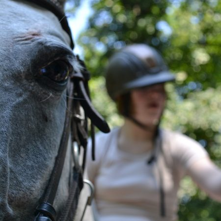 Terapija uz pomoc konja_01